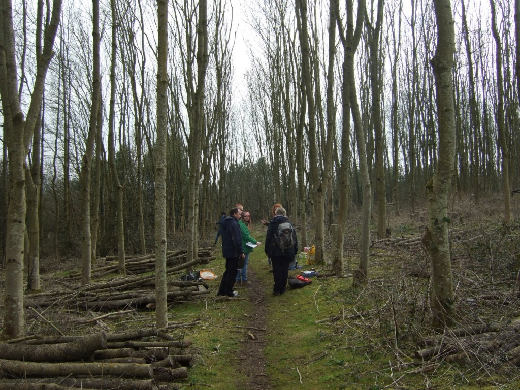 Volunteer discussion in Simms Hill Wood