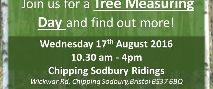 Tree Measuring Day